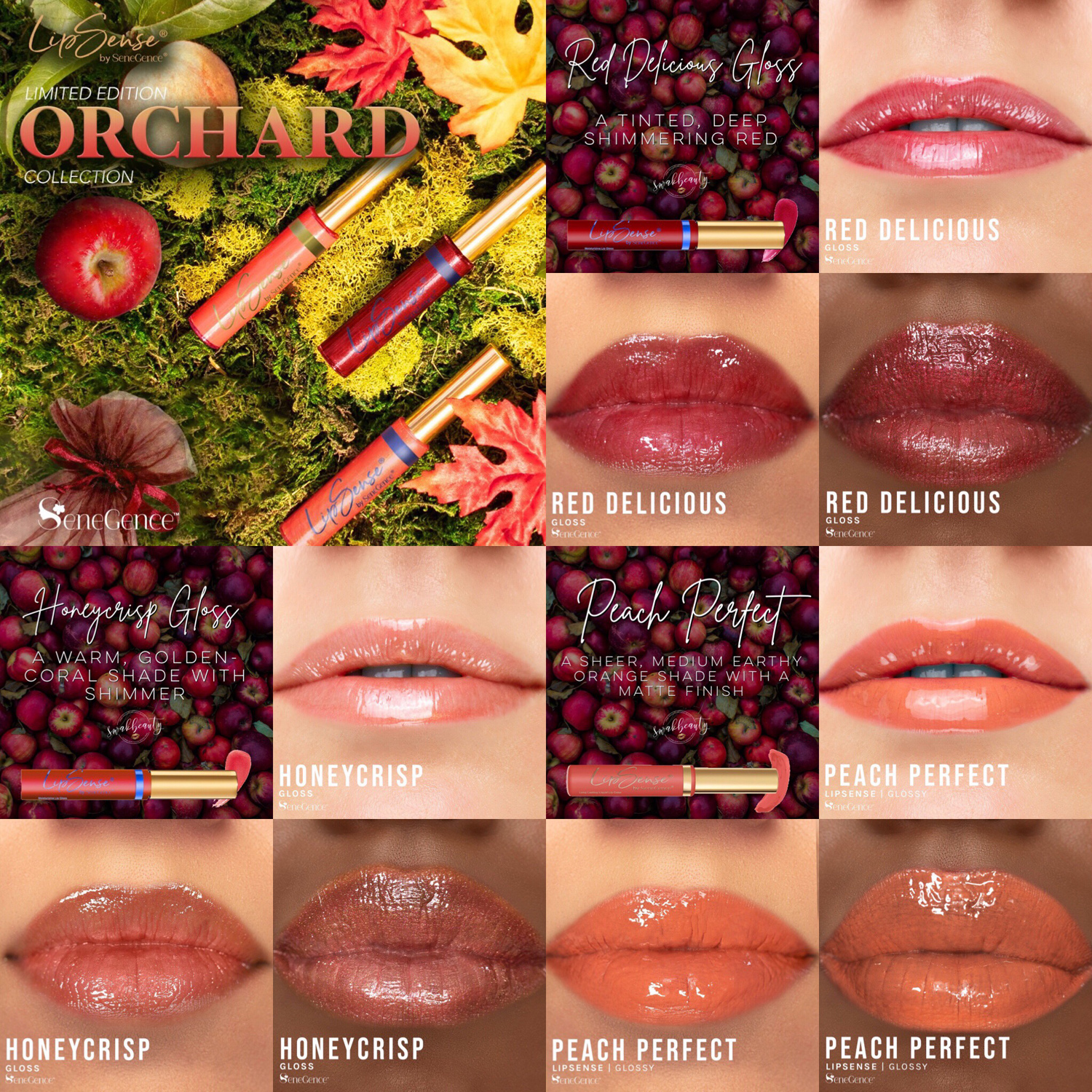 NEW Orchard Lip Collection!